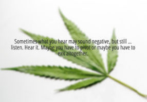 background-of-cannabis-analysis-of-cannabis-in-laboratory-picture-id979176934(1)